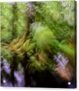 Abstract Rain Forest Acrylic Print