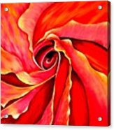 Abstract Rosebud Fire Orange Acrylic Print