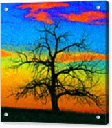 Abstract Single Tree Strong Colors Acrylic Print