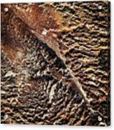 Abstract Surface Bumpy Stone Acrylic Print