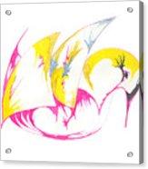 Abstract Swan Acrylic Print