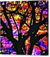 Abstract Tree 304 Acrylic Print