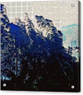 Abstract Trees 8 Acrylic Print