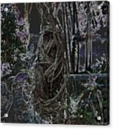 Abstract Twisted Tree Acrylic Print
