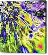 Abstract Wildflower 5 Acrylic Print