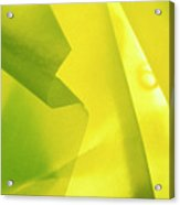 Abstract Yellow And Green Acrylic Print