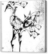 Abstraction 1809 Acrylic Print