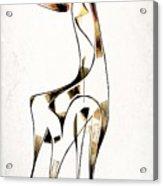 Abstraction 2920 Acrylic Print