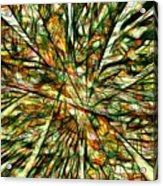 Abstraction 3099 Acrylic Print