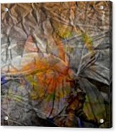 Abstraction 3414 Acrylic Print