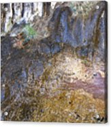 Abstraction In Color And Texture From Wet Rock Acrylic Print