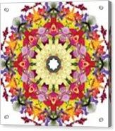 Abundantly Colorful Orchid Mandala Acrylic Print