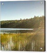 Acadia National Park Shoreline In Evening Sun Acrylic Print