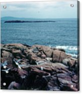 Acadia Park Maine Coast Acrylic Print