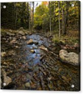 Acadia Waterscape Acrylic Print