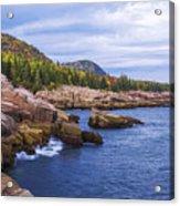 Acadia's Coast Acrylic Print