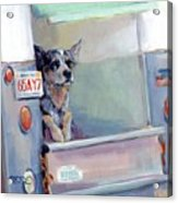 Acd Delivery Boy Acrylic Print