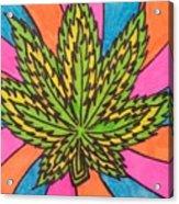 Aceo Cannabis Abstract Leaf  Acrylic Print