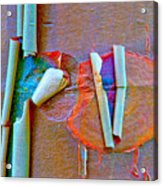 Acer Griseum Abstract Bark Acrylic Print