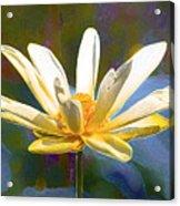 Achievement Of Enlightenment The Golden Lotus Acrylic Print