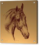 Achilles Acrylic Print