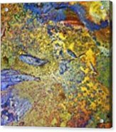 Acid Vs Texture Acrylic Print