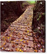 Across The Footbridge Acrylic Print