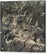 Acrylic Resin Pour 2872 Acrylic Print