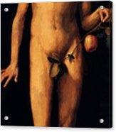 Adam 1507 Acrylic Print