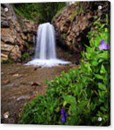 Adams Canyon Lower Falls Spring Acrylic Print