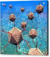 Adenovirus Particles 3 Acrylic Print by Russell Kightley