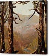 Adirondack Landscape Acrylic Print