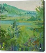 Mountain View Acrylic Print