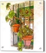 Adobe Window Acrylic Print