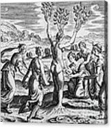 Adonis Being Born From Myrrha Acrylic Print