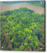 Aerial Forest Acrylic Print