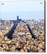 Aerial View Acrylic Print