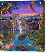 African Animals At The Water Hole Acrylic Print by Anne Wertheim