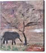 African Landscape Baby Elephant And Banya Tree At Watering Hole With Mountain And Sunset Grasses Shr Acrylic Print