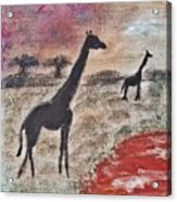 African Landscape Giraffe And Banya Tree At Watering Hole With Mountain And Sunset Grasses Shrubs Sa Acrylic Print
