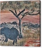 African Landscape With Elephant And Banya Tree At Watering Hole With Mountain And Sunset Grasses Shr Acrylic Print