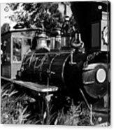 African Rail Acrylic Print