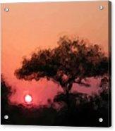 African Sunset Acrylic Print by David Lane