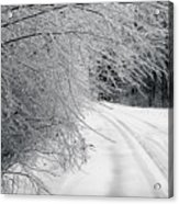 After An Ice Storm Acrylic Print