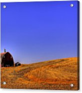 After Harvest Acrylic Print