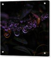 After The Rain Acrylic Print