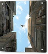 Afternoon Alley Acrylic Print
