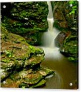 Afternoon At Adams Falls Acrylic Print
