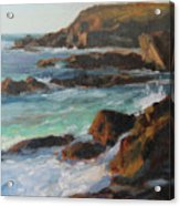 Afternoon Light Point Lobos Acrylic Print by Anna Rose Bain