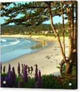 Afternoon On Carmel Beach Acrylic Print